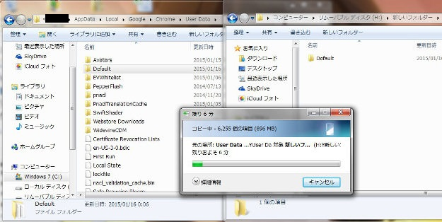 chrome_backup2