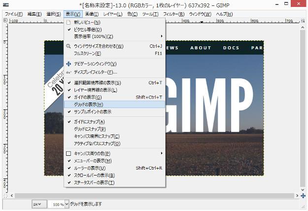 gimp-grid1